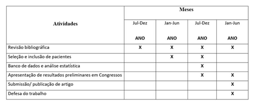 Capcs Cronograma De Execução E Referências De Um Projeto